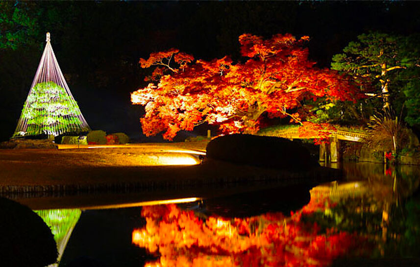 Leaf-Peeping in Tokyo's Famous Gardens